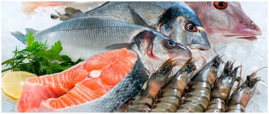 Anna Maria Island Fresh Fish